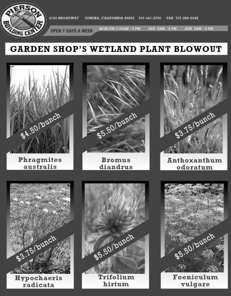 Piersons Plant Blowout!!!
